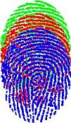Fingerprints image